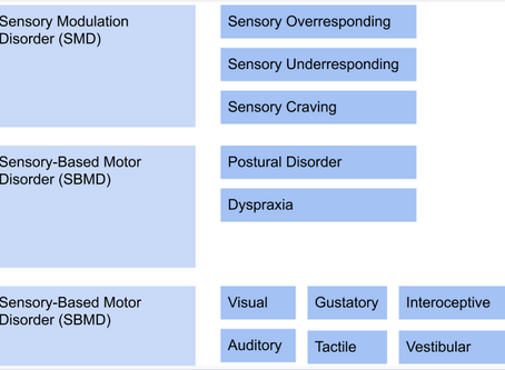 Subdivision of Sensory Processing Disorder (SPD)