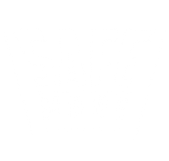 Icon Safe Mode-white.png
