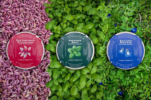 Edible Garden City RGB Grow Kits