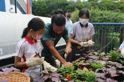 Students with Edible Garden City trainer