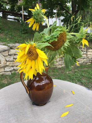 Sonnenblumen à la Vincent van Gogh