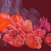 Raspberry 06