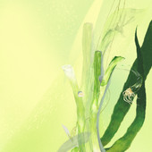 Green-Onion-08.jpg