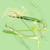Green-Onion-09.jpg