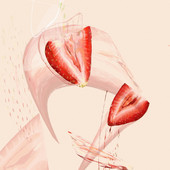 Strawberry 03.jpg