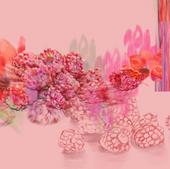 Raspberry 03