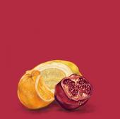 Pomegranate & Citrus 04