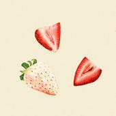 Strawberry 01.jpg