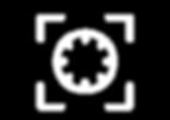 B1-Vector-Visuals-v2_edited.png