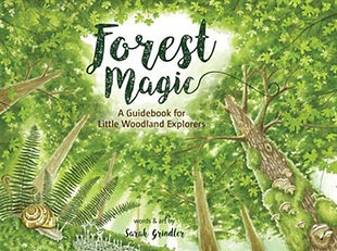 forest magic cover.jpg