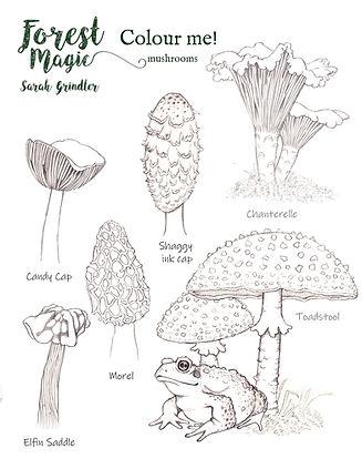 Mushrooms Colouring page.jpg