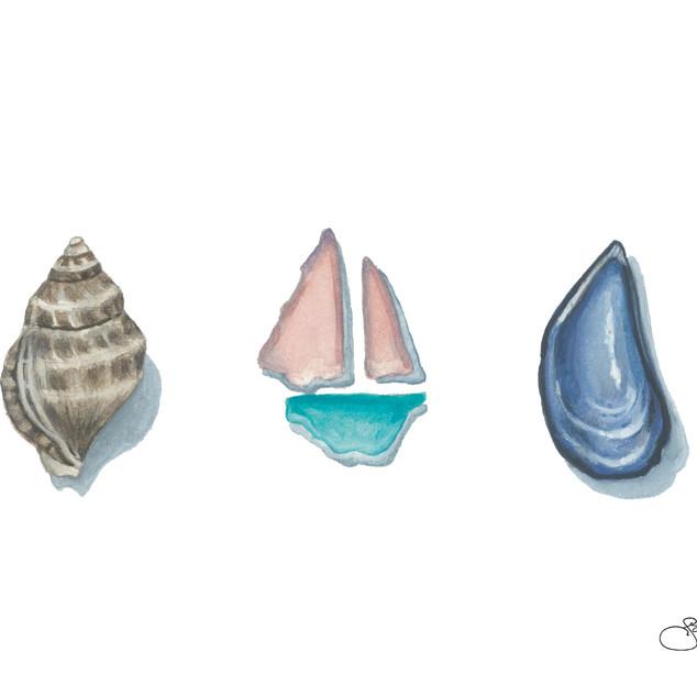 Sail Trio Card