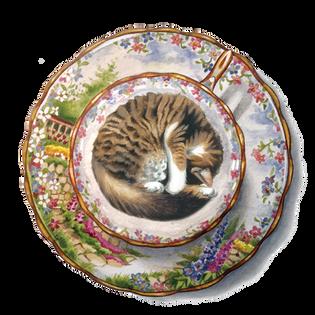 Cup of Cat