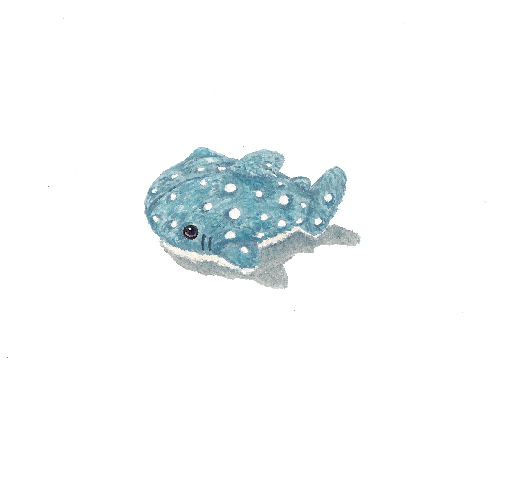 Whale Shark Toy