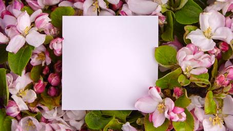 Ostara/Spring Equinox: Rituals