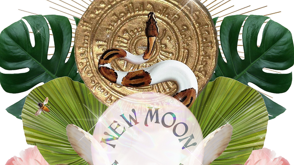 new moon ritual workshop.png