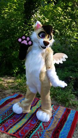 Bambi the Winged WolfDog Fullsuit