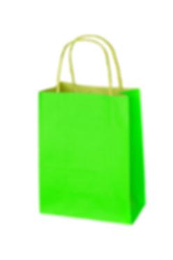green shopping bag isolated on white.jpg