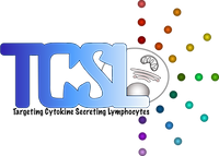 Last Version TCSL logo.png