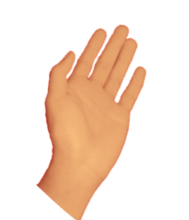 hand1_edited.png