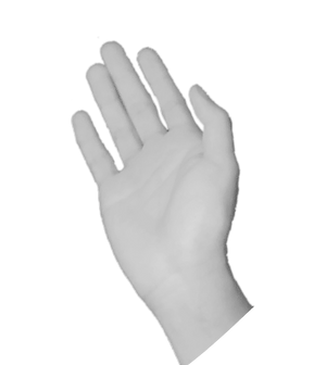 hand1_edited_edited_edited.png