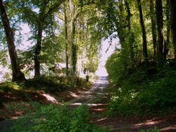promenade vers le moulin