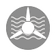 Icon01_W.png