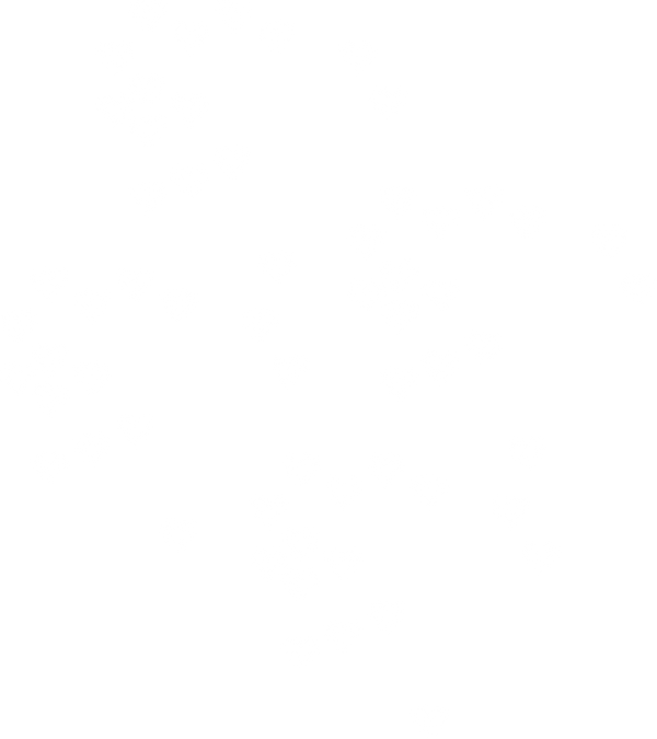Abbie shelter education services_ Domest