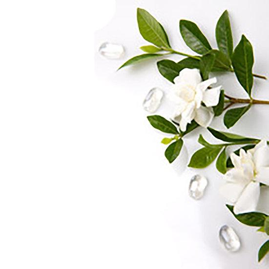 Fragrance | Gardénia
