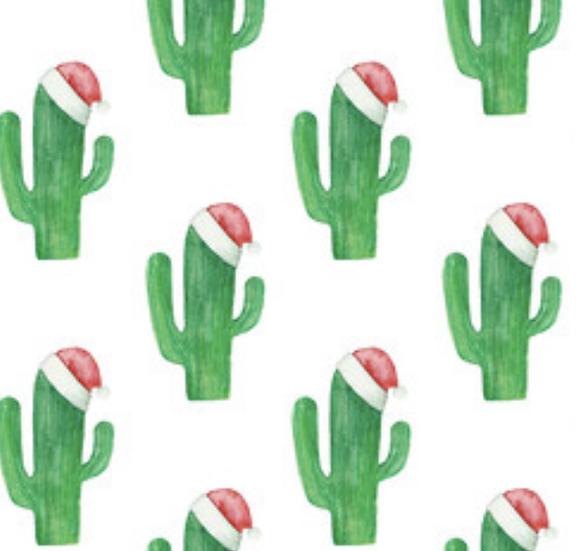 Fragrance | Cactus de Noël