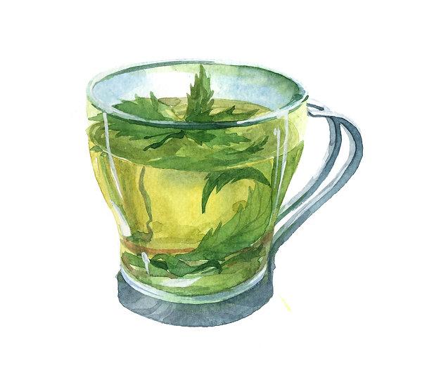 Fragrance naturelle | Thé vert