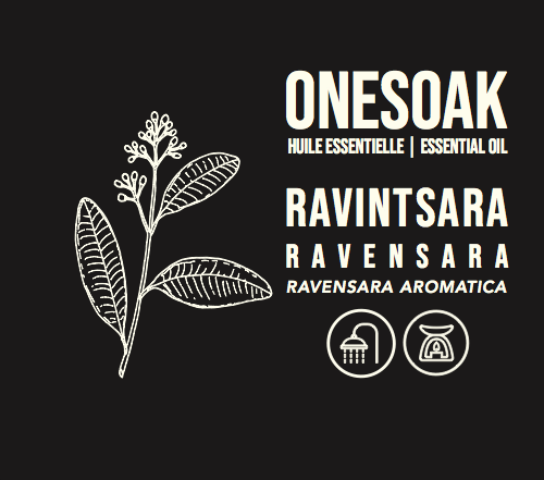 Ravintsara | Biologique