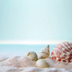 Fragrance | Journée à la plage