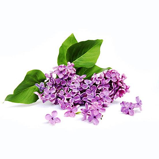 Fragrance | Lilas et lys