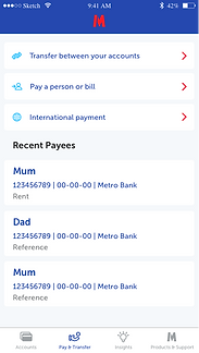 Pay & transfer page Copy 2.png
