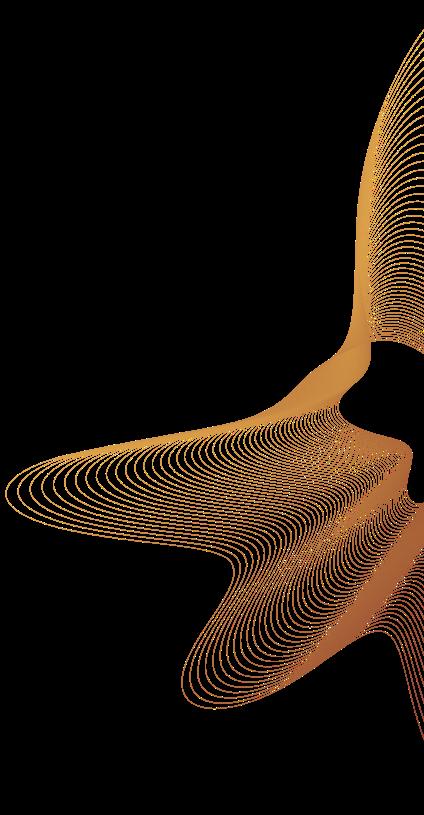 image 261 (1).png