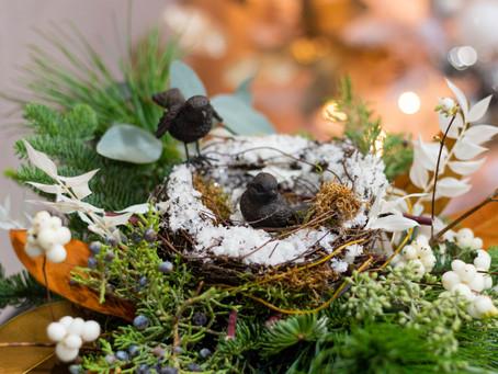 The Bird Nest Legend