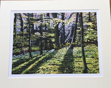 Thorpe Wood Giclee print