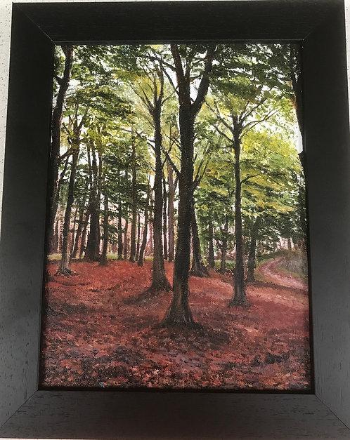 Grassington Woods