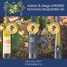 expovina wine trophy zurich 2021, médailles d'or, adrian & diego mathier nouveau salquenen