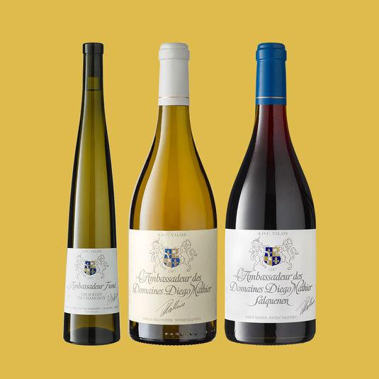 LES AMBASSADEURS - Unsere Weinbotschafter / Les ambassadeurs de notre cave