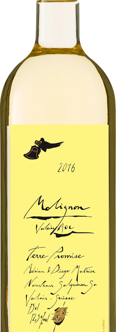 Molignon AOC VS