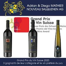Grand Prix du Vin Suisse 2020, 3 gagnants de leur catégorie et le vin préféré du jury, Diego Mathier