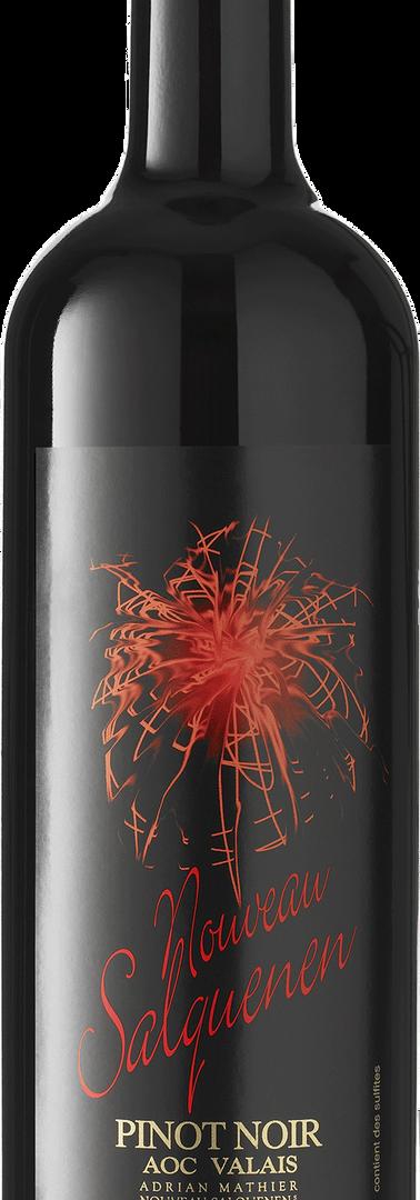 Pinot Noir Nouveau Salquenen AOC VS