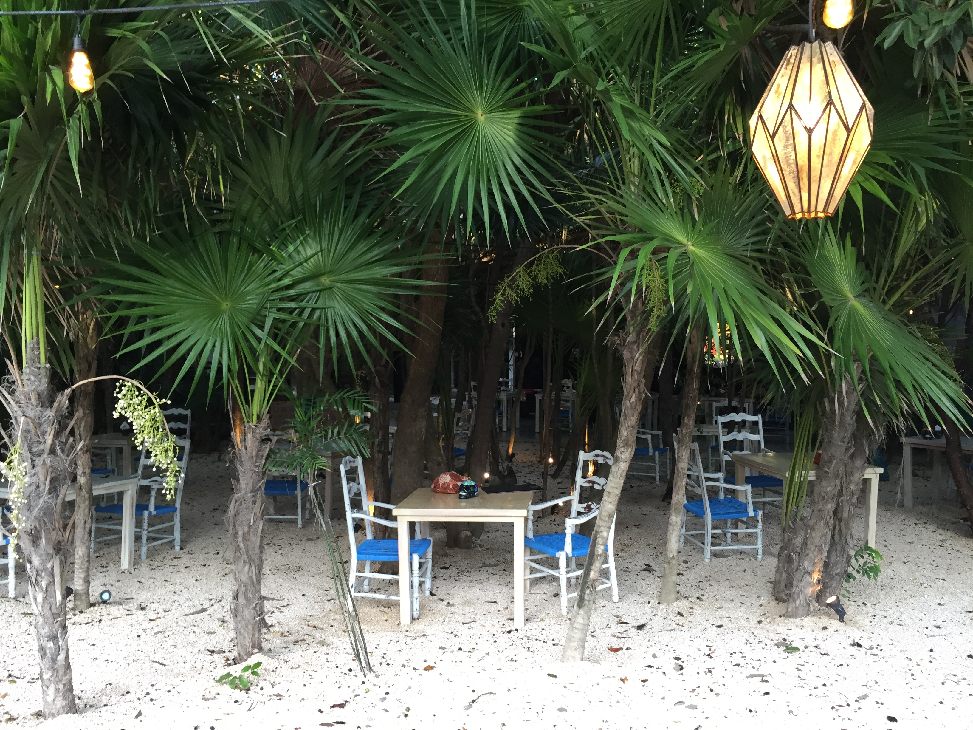 August 2016 - Cancun & Tulum 009