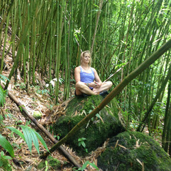 listening to the bamboo sing