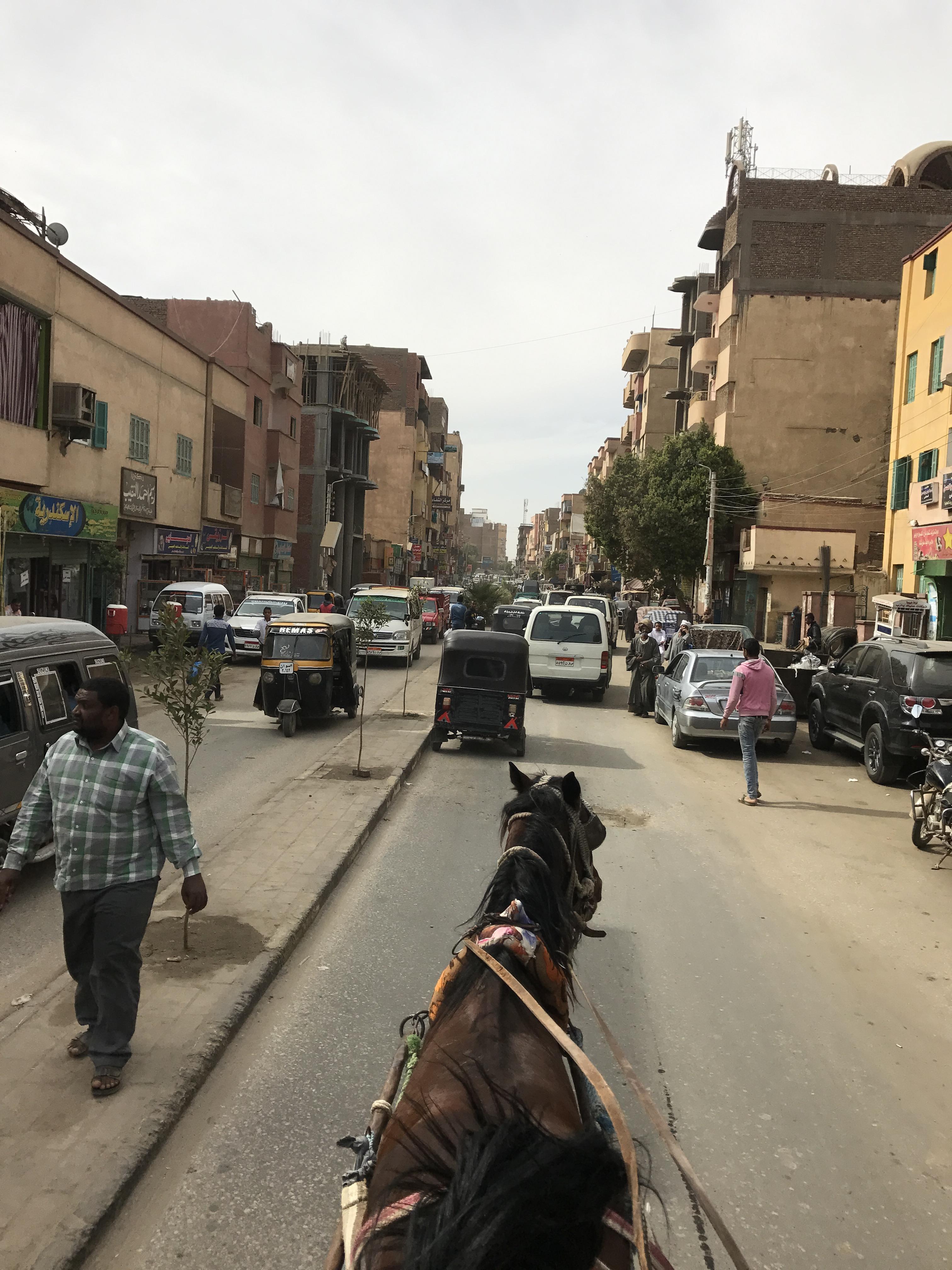 2016 Egypt 141