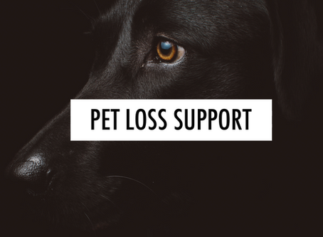 San Diego Pet Loss Support