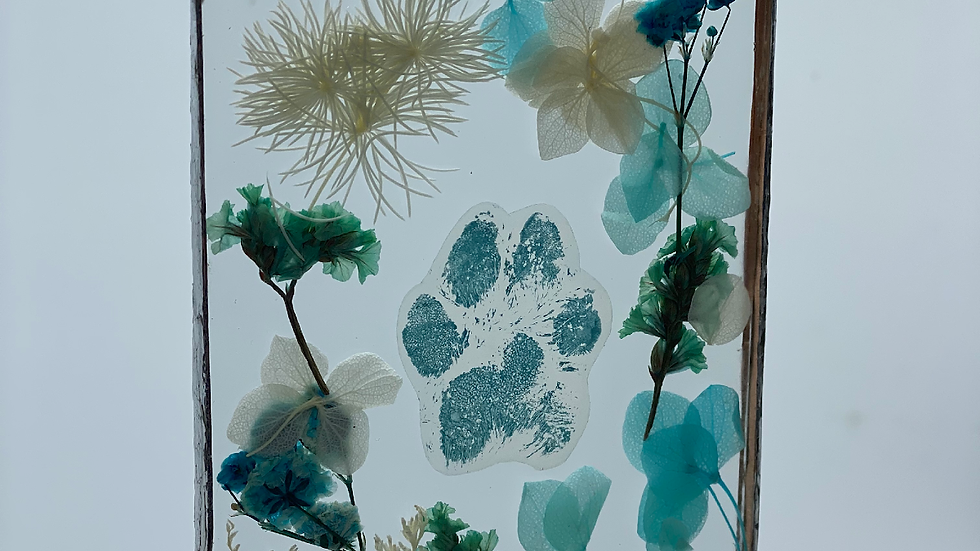 Paw Print Window Pane