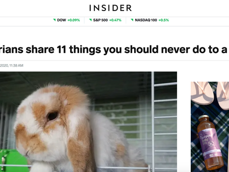 Dr. Rose Featured on Insider Article